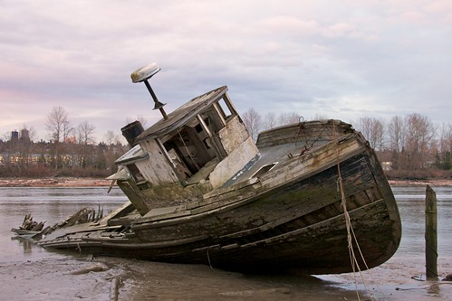 Shipwreck on the Fraser River 1
