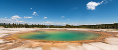 Colors of Yellowstone (Ron Drew) Tags: nikon d800 1424 yellowstone yellowstonenationalpark hotspring grandprismatic color wyoming nationalpark wideangle tourists trees midwaygeyserbasin