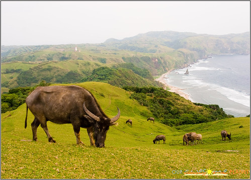 Lord of the Rings in Batanes