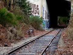 Huge, Eatme (dreamsjung) Tags: art graffiti traintracks tunnel urbanart std