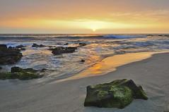 [フリー画像] 自然・風景, 海, ビーチ・砂浜, 夕日・夕焼け・日没, アメリカ合衆国, ハワイ州, 201102061700