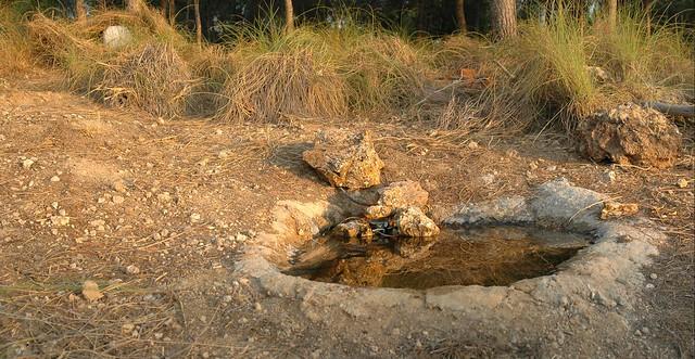 Al fondo asoma el depósito de agua