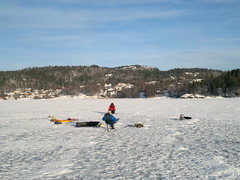 Saltwater Ice Fishing in Norway's Fjords #2