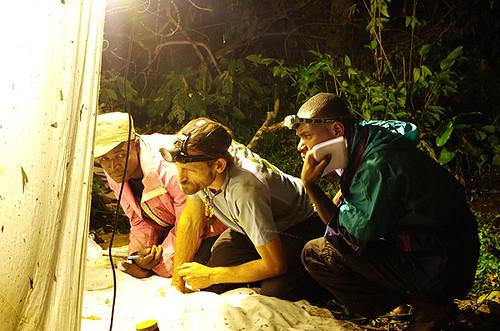 Expédition Sangha 2010 : piège de nuit