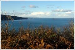 Port-Goret        IMGP3750 (robert.fr.22) Tags: sea mer bretagne paysages côtesdarmor tréveneuc paysagesmarins portgoret