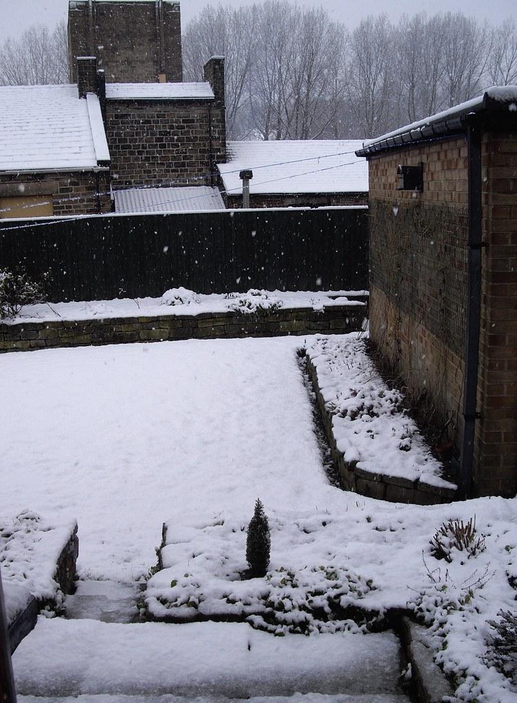Snow 19-2-11
