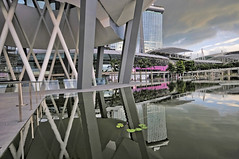 The ArtScience Museum opens... (williamcho) Tags: sky tourism pool museum modern landscape hotel singapore science casino trendy attraction topaz d300 marinabay marinabaysands astoundingimage williamcho artsciencemuseum