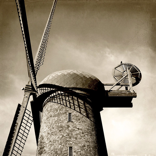 the windmill and the crow