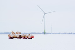 52/365 February 21 - Late Harvest? (Sharon Drummond) Tags: winter snow field project wagon wind farm farmer 365 hay bales turbine odc project365 52365 ourdailychallenge