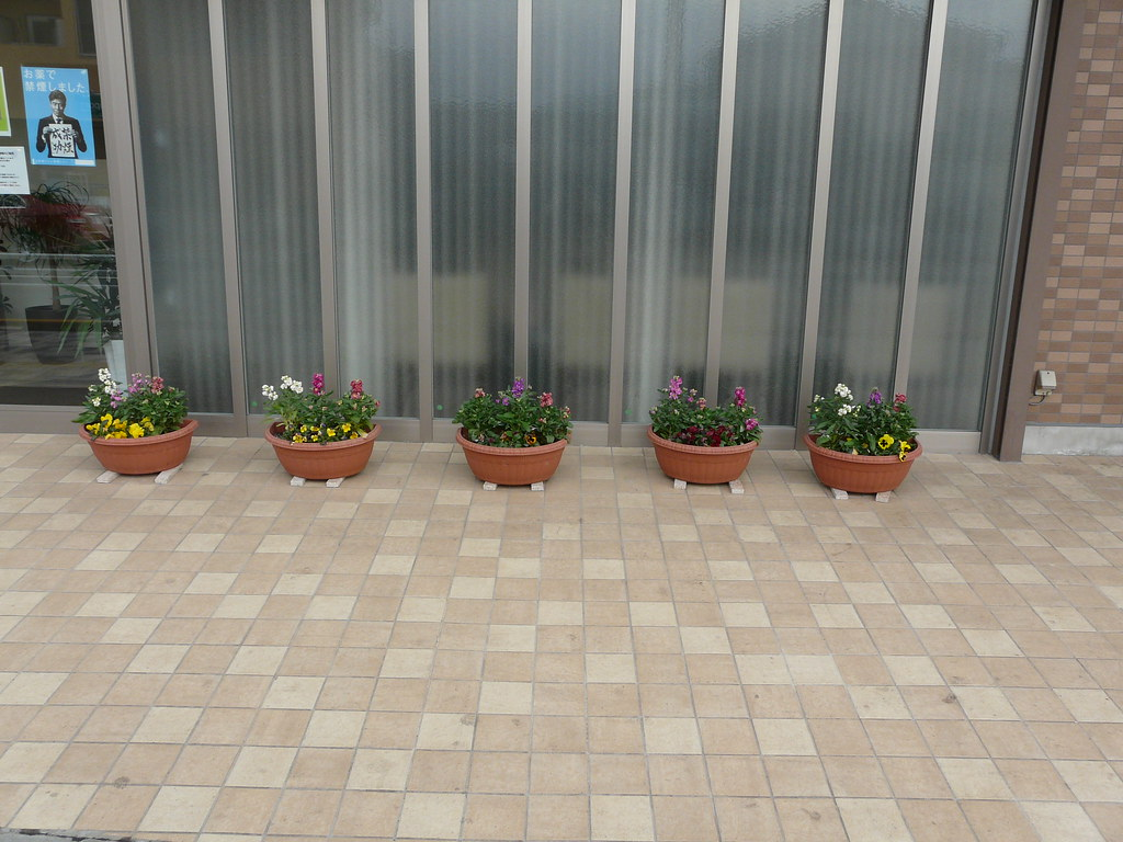Clinic Potplants on Marble