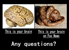 fox brain (d h-j) Tags: news brain poop foxnews shit demotivator demotivate dogshit dogpoop turd demotivational dogturd humanbrain demotivationalposter