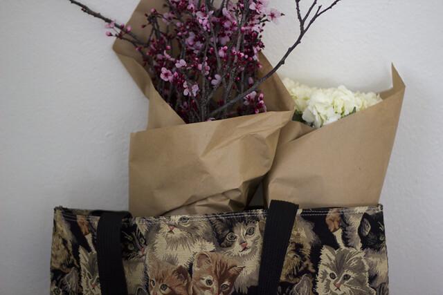 blossoms, hydrangeas & cats