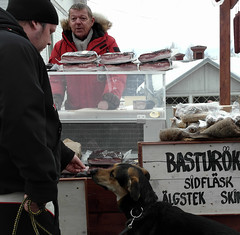 The true expert will judge... (Hedstrom - Sweden) Tags: market sweden wintermarket vintermarknad ockelbo