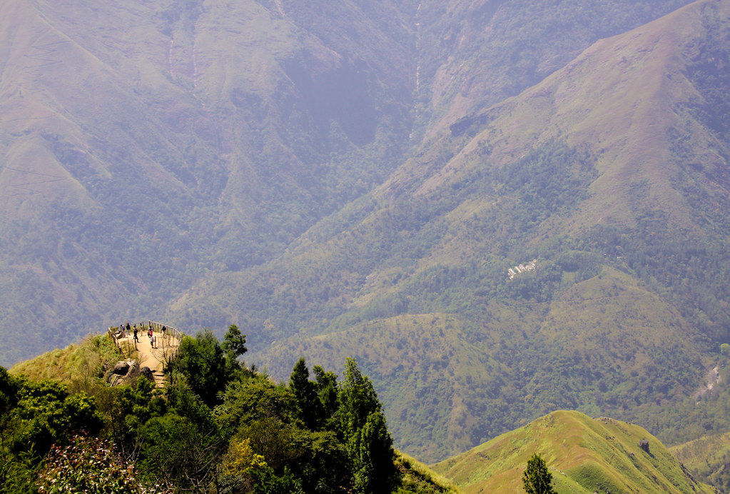 munnar, india. top view