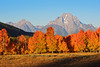 Sunrise in Jackson Hole Valley (bhophotos) Tags: morning travel autumn trees usa mountains fall nature colors sunrise landscape geotagged nikon day clear valley wyoming nikkor aspen tetons jacksonhole grandtetonnationalpark gtnp mtmoran 80200mmf28dnew d700 mtwoodring projectweather pwfall