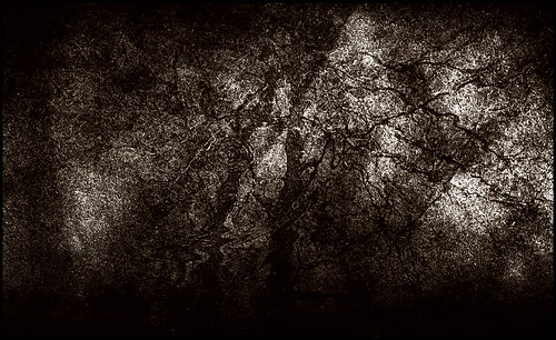 Abstract in Sepia