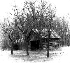 Kentucky Blue (faith goble) Tags: old autumn trees winter snow art fall grass barn woods artist photographer farm kentucky ky shed ruin logs poet writer barren deserted bowlinggreen lumber caseycounty outbuilding fruittrees firsthand faithgoble gographix faithgobleart thisisky