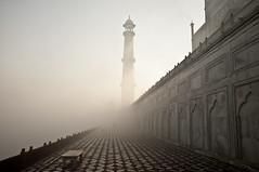 Taj Mahal, Agra (Tommaso Petruzzi) Tags: india white love fog architecture river nikon alba monumento islam ombra taj mahal tajmahal agra marble nebbia bianco atmosfera architettura tomba moschea tempio silenzio foschia marmo paura yamuna d300s