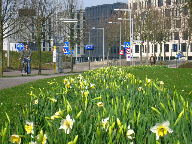 Spring in Louvain