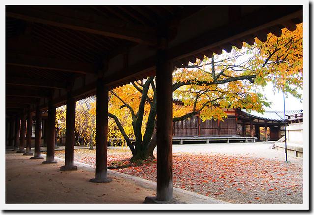 20101118_112059_法隆寺_東院伽藍