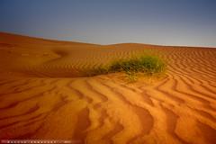 Al_ghadhab3 ( Hassan Ahmasani) Tags:   flickraward5