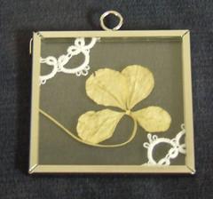 IC12 - Four Leaf Clover