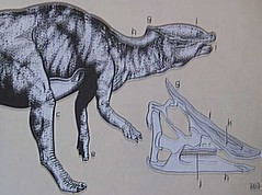 A Field Guide to Dinosaurs, 1983, Page 163