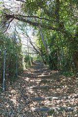 小机城址市民の森(入口)
