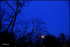 Moonstruck before Dawn (Moniza*) Tags: blue sky moon night landscape twilight nikon luna bluehour celestial d90 moniza
