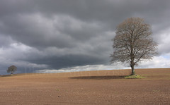 A Time To Sow - Ireland (Andy_Goss) Tags: ireland stormclouds carlow aprilshowers vanagram gettyimagesirelandq1