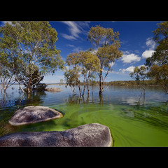 Green Lake...what else :-) (Garry - www.visionandimagination.com) Tags: blue lake tree green nature gum landscape rocks australia boulders qld queensland fertilizer algae nitrogen hazard garry ecosystem phosphor bluegreenalgae pollutants aquaticecosystem eutrophisation visionandimagination