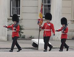 Img555053nx2 (veryamateurish) Tags: unitedkingdom british military army london wellingtonbarracks changingoftheguard publicduties ceremonial guardmounting newguard footguards householddivision grenadierguards
