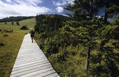 Wandern im Almenland (Naturpark Almenland) Tags: hütte moorlehrpfad wald wandern almenland steiermark österreich naturpark teichalm