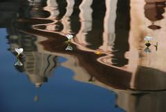 Flowers & reflection  1  פרחים והשתקפות (אסף פולק asaf pollak) Tags: old flowers india reflection water nikon north structure pollack assaf rajasthan פרחים bundi waterflowers השתקפות צפון מים הודו d80 עתיק ניקון פרחימים מבנה אסףפולק asafpollak רגאסטאן בונדי
