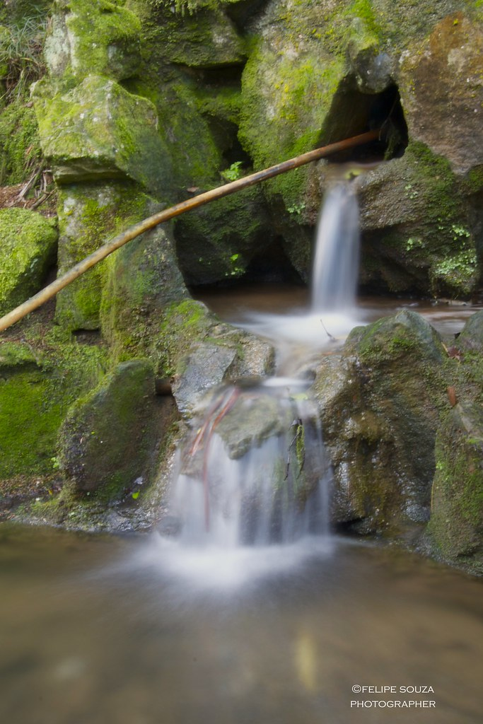 Small waterfall at the Botanic Garden