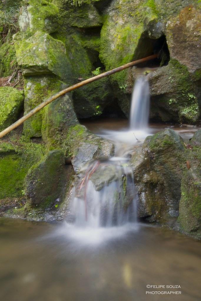 Small waterfall at the Botanic Garden