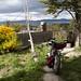 Bicicletta Koga montata