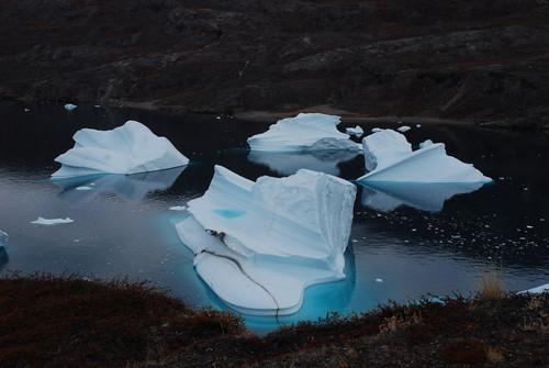 "The ""Iceberg Graveyard,"" R¿de Island, F¿hnfjord, Scoresby Sund,"