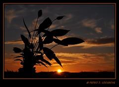 Sabadell, 20 Febrer 2011, 18:18 (Explore Feb. 21, 2011) (Perikolo) Tags: sunset sol atardecer puesta posta sabadell capvespre platinumheartaward doublyniceshot doubleniceshot tripleniceshot mygearandme mygearandmepremium mygearandmebronze mygearandmesilver 4timesasnice 5timesasnice