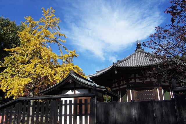 20101116_110601_興福寺_北円堂(国宝)