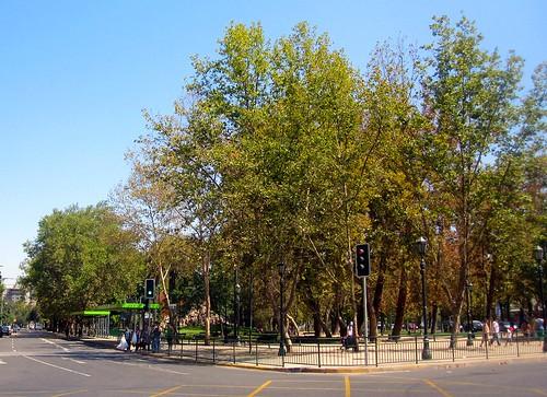 скоро осінь