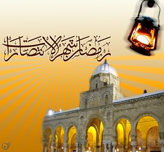 (media tiger) Tags: design video photos banner ramadan added
