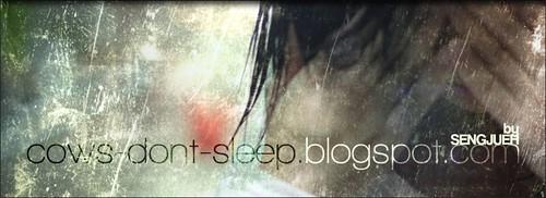 Blog header/banner