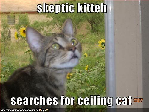 skeptickitteh128515605054816477