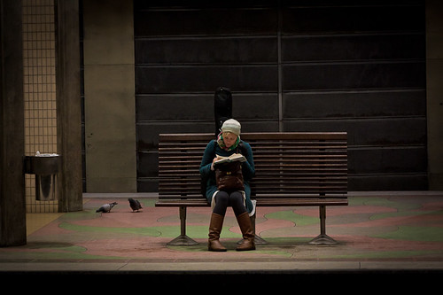 Reading on the bench