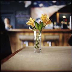 * * * (Ansel Olson) Tags: new flowers 120 6x6 mamiya tlr film glass bar mediumformat table restaurant virginia shot wine kodak richmond va 400 vase portra secco c330 pushedto1600 c330s mamiyasekor55mmf45