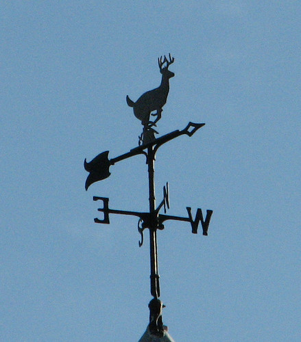 weathervane definition/meaning | English picture dictionary Imagict