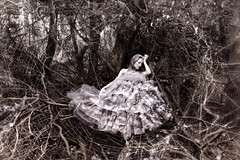 Wonderland : Anansi's Widow (Kirsty Mitchell) Tags: fairytale forest woods spiderweb helen fantasy wonderland enchanted kirstymitchell elbievaneeden wonderlandischanging thedemiseofthefoxglovefairy
