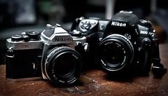 Film and Digital Nikon SLRs (mjkjr) Tags: atlanta ga georgia rebel 50mm nikon dof bokeh atl handheld filmcamera nikkor nikonfm2 f28 newnan fm2 50mmf14 selectivefocus cowetacounty 2011 nikond200 filmvsdigital 550d 30265 nikon50mm vivitar285hv nikkorf18 t2i ef1755mmf28isusm 50mmmf nikon50mmf14ai 50mm14ai mjkjr npt04 httpwwwflickrcomphotosmjkjr nikonbackground