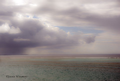 Rain clouds over the Atlantic Ocean in Turks and Caicos Islands (jackie weisberg) Tags: travel sea vacation sky tourism beach nature water beautiful rain weather clouds hotel skies view diving bluesky tourists resort beaches tropical tropicalislands hotels oceans resorts provo touristattraction puffyclouds rainclouds turksandcaicos whiteclouds westindies turksandcaicosislands northatlanticocean sevenstars coralreefs providenciales turquoisewater touristdestination natureplus gracebay britishoverseasterritory jackieweisberg provedenciales